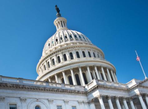 The U.S. Capitol Building - Daylight